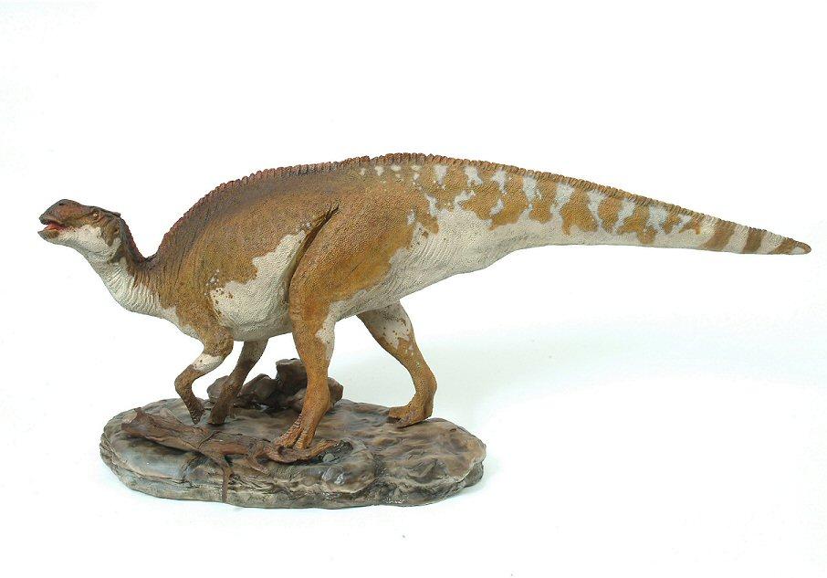 brachylophosaurus - photo #14