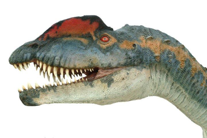 Динозавры вымершаяистория нашей